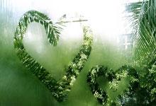 新明珠万人齐唱《我和我的祖国》,献礼新中国成立70周年